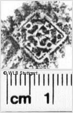 Image Description for https://www.wlb-stuttgart.de/kyriss/images/s0252106.jpg
