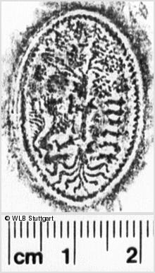 Image Description for https://www.wlb-stuttgart.de/kyriss/images/s0254123.jpg