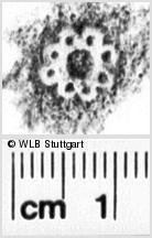 Image Description for https://www.wlb-stuttgart.de/kyriss/images/s0261030.jpg
