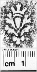 Image Description for https://www.wlb-stuttgart.de/kyriss/images/s0265916.jpg
