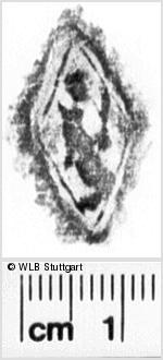 Image Description for https://www.wlb-stuttgart.de/kyriss/images/s0266405.jpg