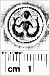 Image Description for https://www.wlb-stuttgart.de/kyriss/images/s0270201.jpg