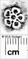 Image Description for https://www.wlb-stuttgart.de/kyriss/images/s0270218.jpg