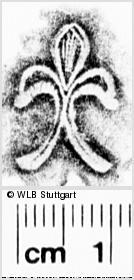 Image Description for https://www.wlb-stuttgart.de/kyriss/images/s0270319.jpg