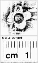 Image Description for https://www.wlb-stuttgart.de/kyriss/images/s0271719.jpg