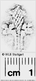 Image Description for https://www.wlb-stuttgart.de/kyriss/images/s0273310.jpg
