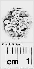 Image Description for https://www.wlb-stuttgart.de/kyriss/images/s0273315.jpg