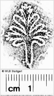 Image Description for https://www.wlb-stuttgart.de/kyriss/images/s0273503.jpg