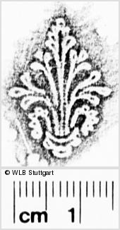 Image Description for https://www.wlb-stuttgart.de/kyriss/images/s0273602.jpg