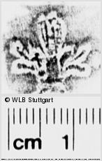 Image Description for https://www.wlb-stuttgart.de/kyriss/images/s0274206.jpg