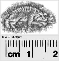 Image Description for https://www.wlb-stuttgart.de/kyriss/images/s0280613.jpg