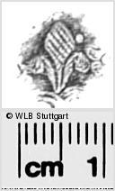 Image Description for https://www.wlb-stuttgart.de/kyriss/images/s0280714.jpg