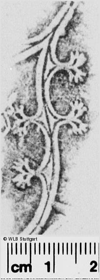 Image Description for https://www.wlb-stuttgart.de/kyriss/images/s0280908.jpg