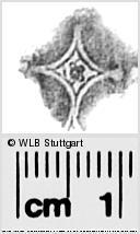 Image Description for https://www.wlb-stuttgart.de/kyriss/images/s0281035.jpg