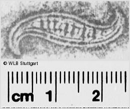 Image Description for https://www.wlb-stuttgart.de/kyriss/images/s0281616.jpg