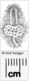 Image Description for https://www.wlb-stuttgart.de/kyriss/images/s0283808.jpg