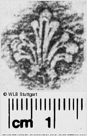 Image Description for https://www.wlb-stuttgart.de/kyriss/images/s0285431.jpg