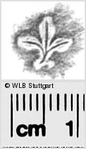Image Description for https://www.wlb-stuttgart.de/kyriss/images/s0286414.jpg