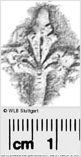 Image Description for https://www.wlb-stuttgart.de/kyriss/images/s0291609.jpg