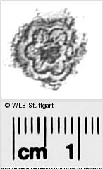 Image Description for https://www.wlb-stuttgart.de/kyriss/images/s0291614.jpg