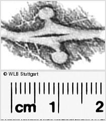 Image Description for https://www.wlb-stuttgart.de/kyriss/images/s0296109.jpg