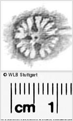 Image Description for https://www.wlb-stuttgart.de/kyriss/images/s0296120.jpg