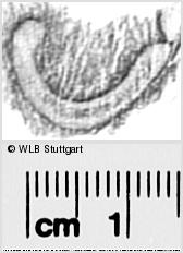 Image Description for https://www.wlb-stuttgart.de/kyriss/images/s0296726.jpg