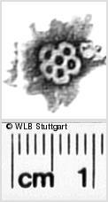 Image Description for https://www.wlb-stuttgart.de/kyriss/images/s0311114.jpg