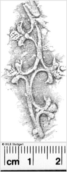 Image Description for https://www.wlb-stuttgart.de/kyriss/images/s0331302.jpg