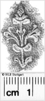 Image Description for https://www.wlb-stuttgart.de/kyriss/images/s0342908.jpg
