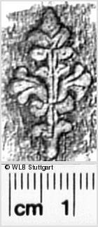 Image Description for https://www.wlb-stuttgart.de/kyriss/images/s0343002.jpg