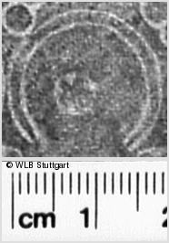 Image Description for https://www.wlb-stuttgart.de/kyriss/images/s0350108.jpg