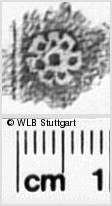 Image Description for https://www.wlb-stuttgart.de/kyriss/images/s0350304.jpg