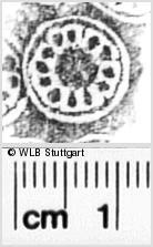 Image Description for https://www.wlb-stuttgart.de/kyriss/images/s0350411.jpg