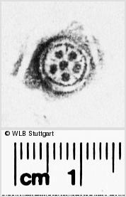 Image Description for https://www.wlb-stuttgart.de/kyriss/images/s2826237.jpg